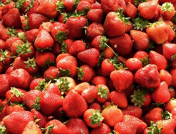 close up of Stawberries