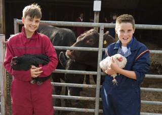 Farm Open Morning